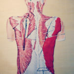 Clases y Tutorias de Anatomía Humana basica y avanzada